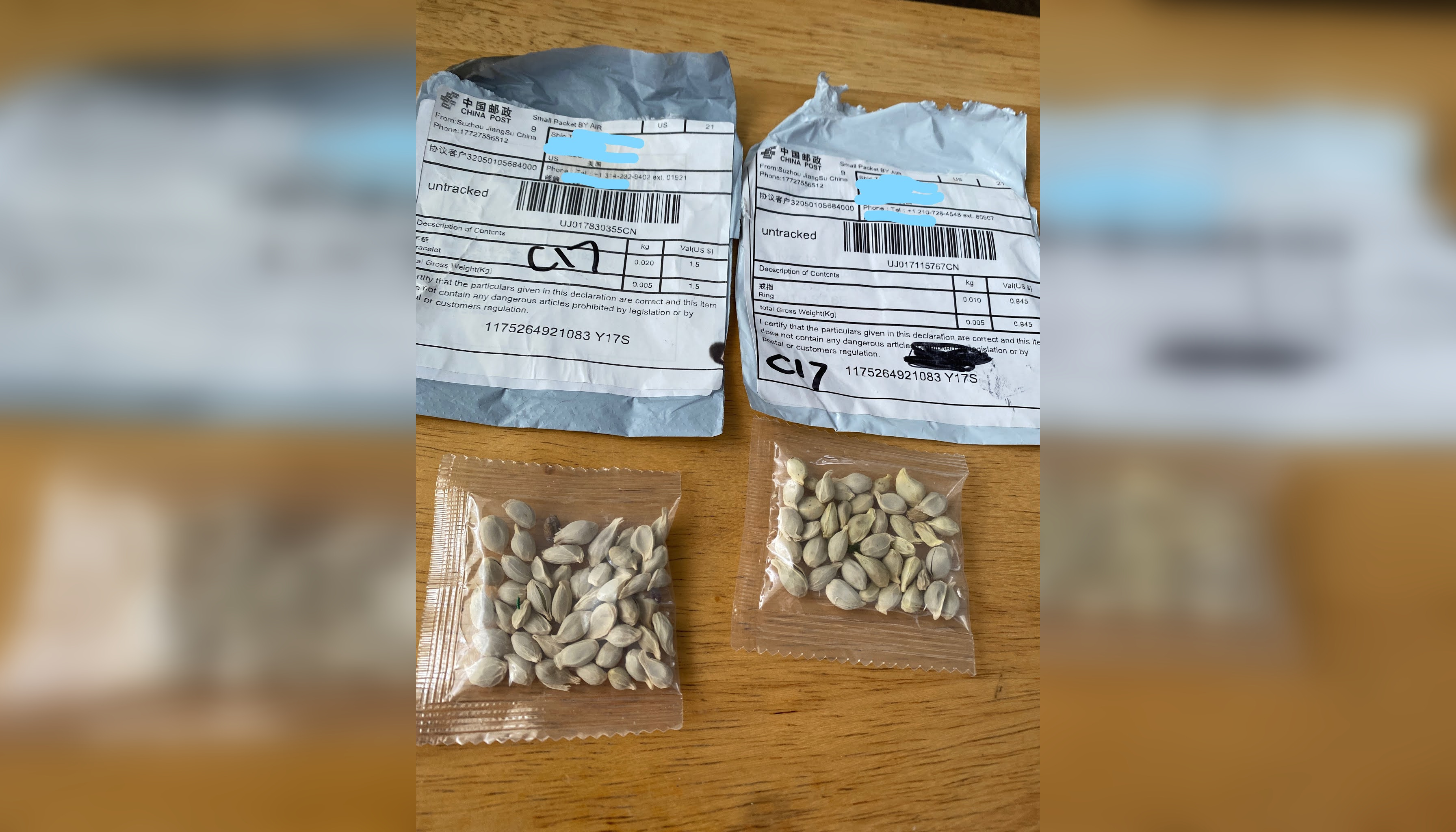 Package of Mystery Seeds